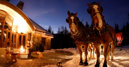 Whistler Sleigh Rides - A Little Bit of Holiday Magic